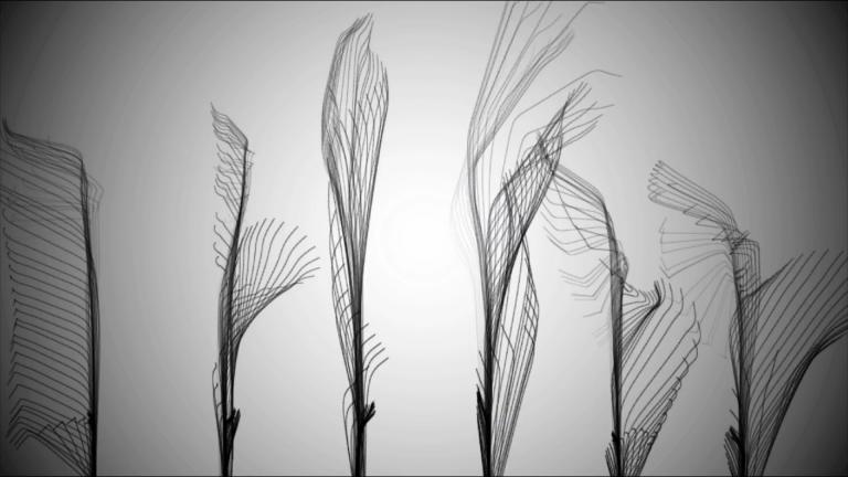 AV01 video cover