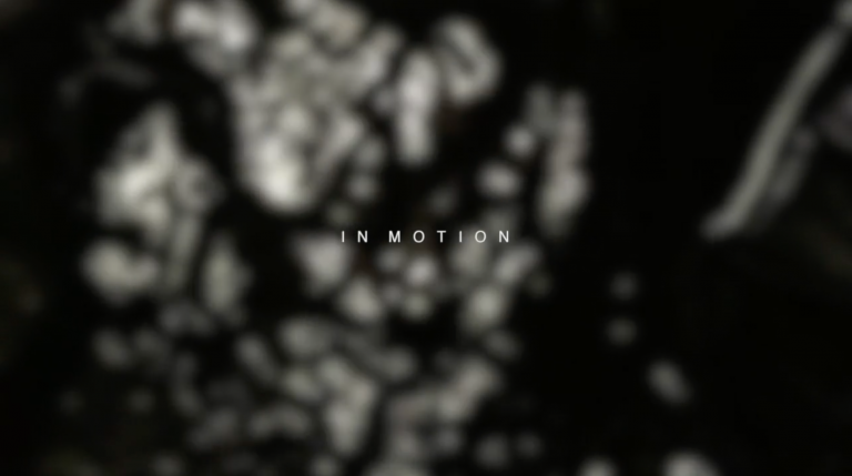 IN MOTION video cover